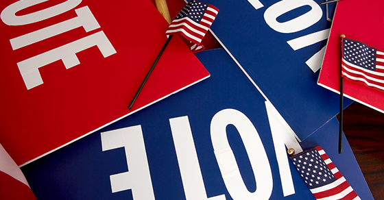 voting signs & American flags
